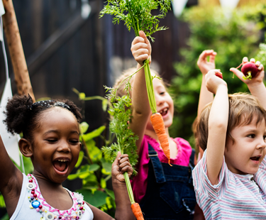 School Gardens: Learning Beyond The Crops
