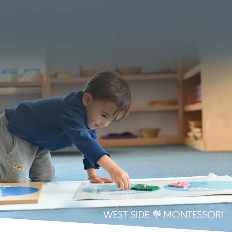 School Spotlight: How West Side Montessori Successfully Transitioned to Distance Learning